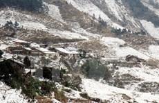Lạng Sơn thiệt hại trên 4.000 ha rau màu do xuất hiện băng tuyết