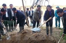 Bí Thư và Chủ tịch Hà Nội dự Lễ xuống đồng và Tết trồng cây