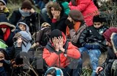 Liên minh châu Âu bị chỉ trích vì phân biệt đối xử người tị nạn
