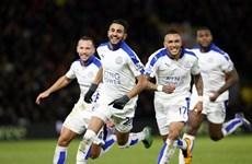 Premier League: Leicester tiến sát ngôi vương, Hiddink lập kỷ lục