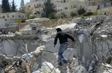 """Israel phá nhà của người dân Palestine ở mức """"đáng báo động"""""""
