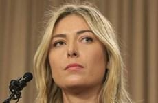 Bộ trưởng Thể thao Nga nhận trách nhiệm sau vụ Maria Sharapova