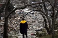 Sốc với con số người chết trong thảm họa thiên tai ở Nhật Bản