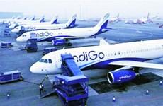 Ấn Độ: 10 chuyến bay bị đe dọa đánh bom, sơ tán hành khách