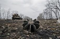 Ukraine: Bất cập nảy sinh đe dọa thỏa thuận ngừng bắn Minsk II