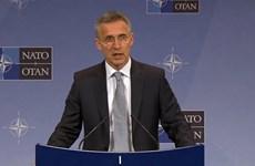 NATO có thể không tham gia liên minh quốc tế chống phiến quân IS