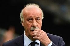 Rộ tin đồn HLV Del Bosque nghỉ hưu sau thất bại trước Italy