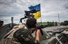Chỉ trong 1 tuần, gần 60 binh sỹ Ukraine thiệt mạng tại Donbas