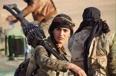 """""""Angelina Jolie người Kurd"""" hy sinh khi chống lại phiến quân IS"""