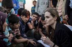Siêu sao Angelina Jolie đến thăm các trại tị nạn tại ở Jordan