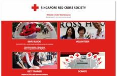 Singapore: Dữ liệu của hơn 4.000 người đăng ký hiến máu bị rò rỉ