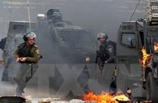 Jordan kêu gọi cộng đồng nỗ lực giải quyết xung đột Palestine-Israel