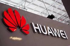 """[Video] Huawei thảo luận """"các biện pháp khẩn cấp"""" với Google"""