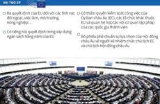 [Infographic] Châu Âu bắt đầu bầu Nghị viện nhiệm kỳ 2019-2024