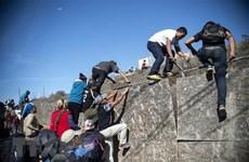 Dự án xây tường biên giới Mỹ-Mexico tiếp tục gặp trở ngại