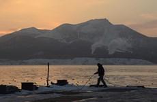 Nhật Bản và Nga thảo luận về hợp tác kinh tế tại chuỗi đảo tranh chấp
