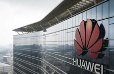 Liên minh châu Phi tăng cường hợp tác với tập đoàn Huawei