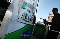 Thị trường dầu mỏ thế giới trong tuần qua tiếp tục giảm mạnh