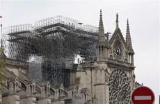Cháy Nhà thờ Đức Bà Paris: Kêu gọi trẻ em, phụ nữ mang thai xét nghiệm