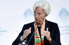 IMF nêu nhiệm vụ ưu tiên hàng đầu của hội nghị quan chức G20