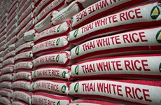 Giá gạo Ấn Độ và Thái Lan đều tăng do đồng nội tệ mạnh lên