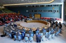 Liên hợp quốc bầu chọn ủy viên không thường trực Hội đồng Bảo an
