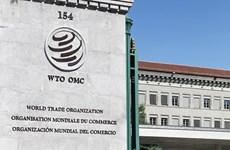 Diễn đàn SPIEF 2019: Nga kêu gọi tăng cường hiệu quả của WTO