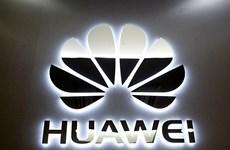 Tập đoàn công nghệ Huawei nỗ lực củng cố vị thế tại châu Phi