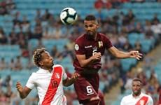 Copa America 2019: Lo ngại số lượng cổ động viên giảm sút