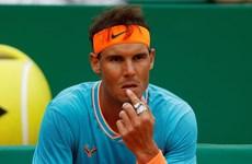 Rafael Nadal khó chịu khi bị xếp sau Federer tại Wimbledon 2019