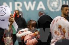 Các nước cam kết viện trợ hơn 110 triệu USD cho người tị nạn Palestine