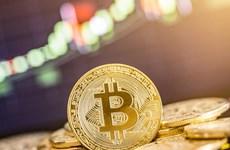 Đồng tiền Bitcoin trượt giá tới 12%, rời khỏi mức đỉnh của 18 tháng