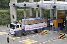 Hội Chữ thập đỏ kéo dài thời gian viện trợ khẩn cấp cho Triều Tiên