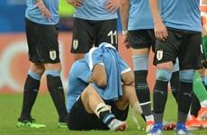 Luis Suarez vẫn chưa quên thất bại cay đắng tại Copa America
