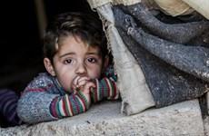 Ký kết thỏa thuận bảo vệ trẻ em trong xung đột tại Syria