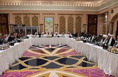 Lực lượng Taliban sẽ đàm phán với đại diện Afghanistan tại Qatar