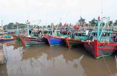 Ứng phó Bão số 2: Thái Bình nghiêm cấm tàu, thuyền ra khơi