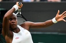 Wimbledon: Tay vợt 15 tuổi tiếp tục khiến làng banh nỉ ngỡ ngàng
