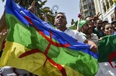 Biểu tình tại thủ đô của Algeria, phản đối chính phủ lâm thời