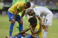 Brazil tiếp tục nhận hung tin trước trận chung kết Copa America