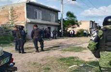 Mexico giải cứu hàng chục người di cư Trung Mỹ bị bắt cóc