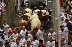[Video] Kinh hoàng cảnh bò tót rượt đuổi người dự lễ hội San Fermin