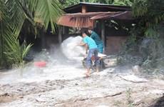 Xuất hiện ổ dịch tả lợn châu Phi đầu tiên tại tỉnh Tây Ninh