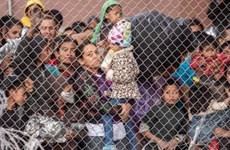 Mỹ điều tra cáo buộc các nhân viên biên phòng lạm dụng trẻ em di cư