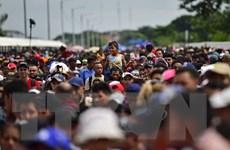 Mỹ bắt đầu chiến dịch truy quét người nhập cư bất hợp pháp