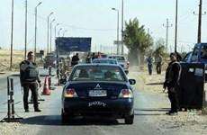 Ai Cập: Tay súng IS đánh bom liều chết tại Bán đảo Sinai