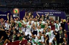Đánh bại Senegal, Algeria lần thứ 2 giành chức vô địch châu Phi