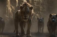 'The Lion King' - Những thước phim chân thực đến đáng kinh ngạc