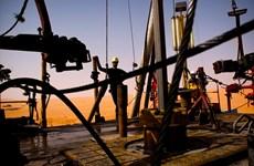 Libya: Cảng dầu chủ chốt Zawiya bị gián đoạn hoạt động