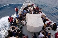 Thổ Nhĩ Kỳ bắt giữ hàng nghìn người nhập cư bất hợp pháp